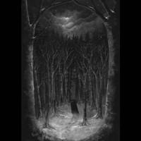 Paysage d'hivers - Im Wald Teaser Image