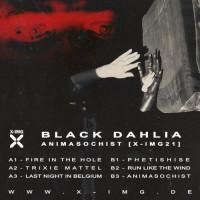 Black Dahlia - Animasochist Teaser Image
