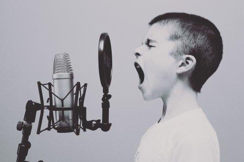 Wir suchen KEINEN Sänger