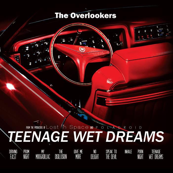 Artikelbild,The Overlookers - teenage wet...