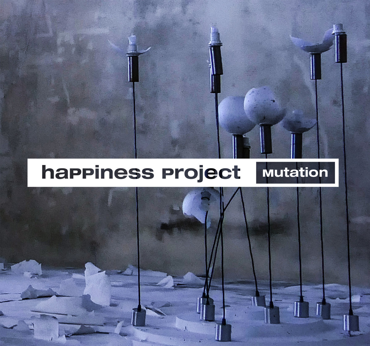 Happiness  Project - Mutation