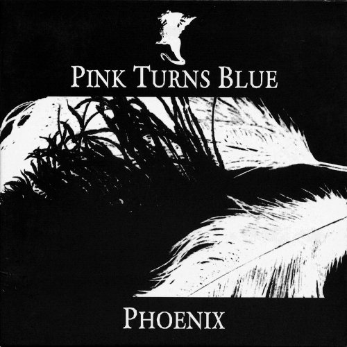 Pink Turns Blue - Phoenix