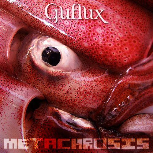 Guflux mit Remix EP Metachrosis