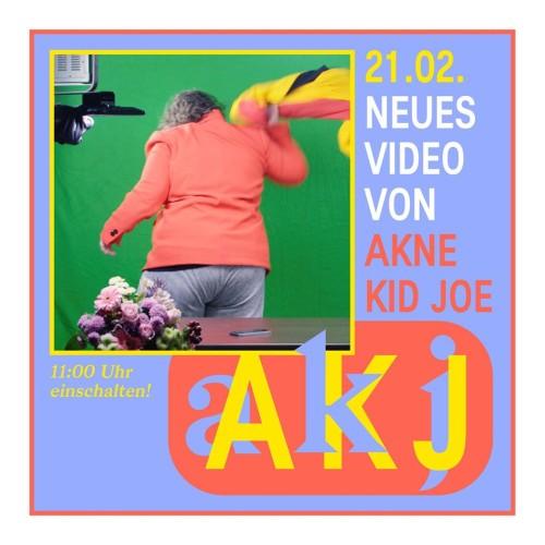 Achtung Punk! Akne Kid Joe...