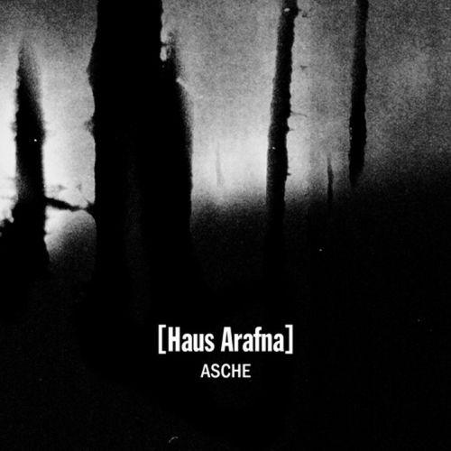 [Haus Arafna] - Asche