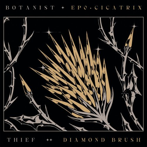 Botanist / Thief - Cicatrix / Diamond Brush